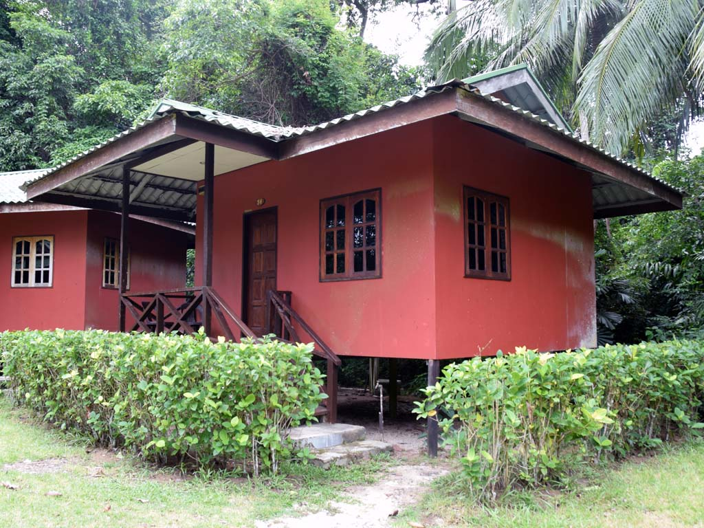 Survivor Lodge