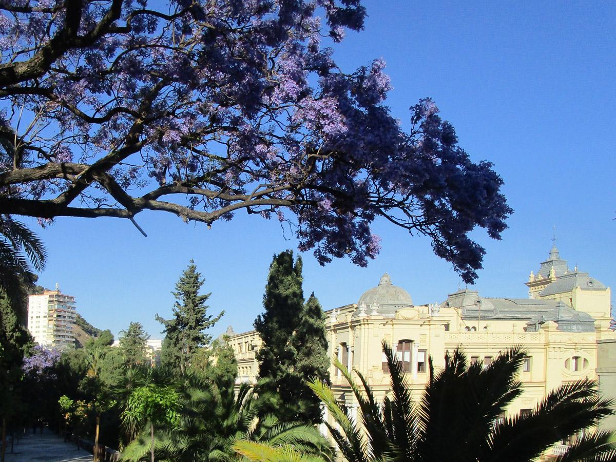2019 Málaga